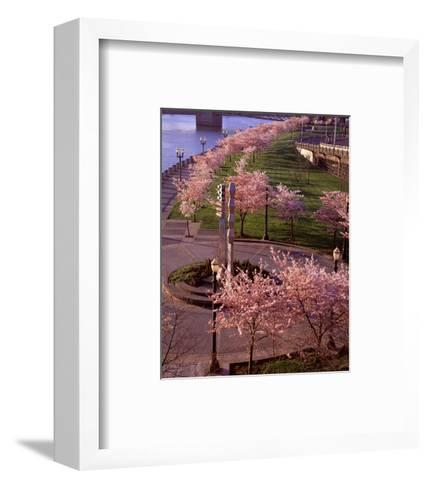 Spring in Portland-Ike Leahy-Framed Art Print