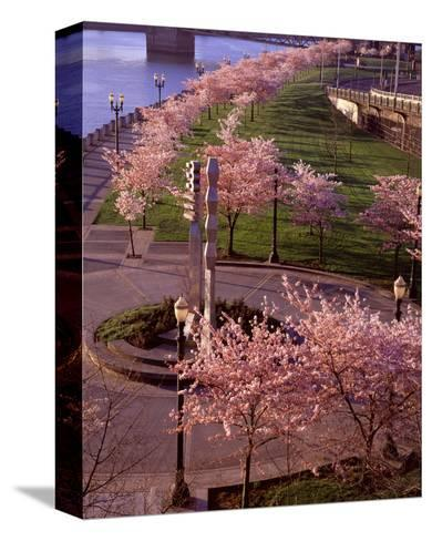 Spring in Portland-Ike Leahy-Stretched Canvas Print