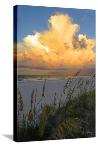 Majestic Coast II-Alex Williams-Stretched Canvas Print