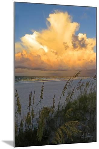 Majestic Coast II-Alex Williams-Mounted Photo