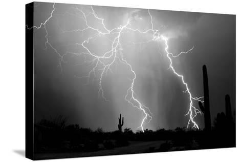 Electrifying BW-Douglas Taylor-Stretched Canvas Print