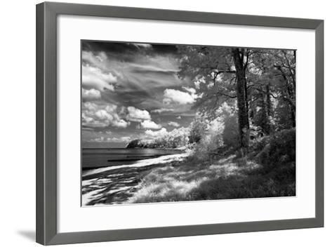 Tappahannock Shores II-Alan Hausenflock-Framed Art Print
