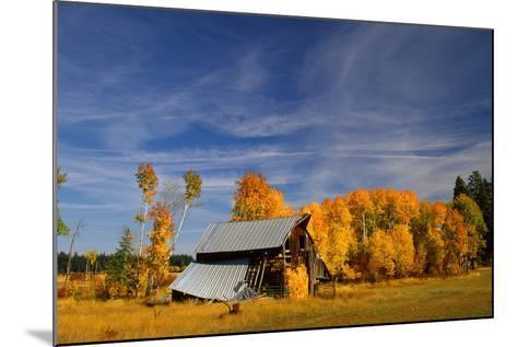 Old Barn-Ike Leahy-Mounted Photo