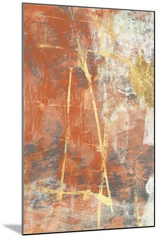 Terre Cotta Lace II-Jennifer Goldberger-Mounted Art Print