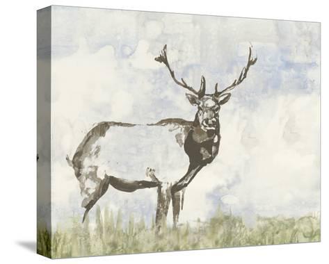 Wild Call II-Jennifer Goldberger-Stretched Canvas Print