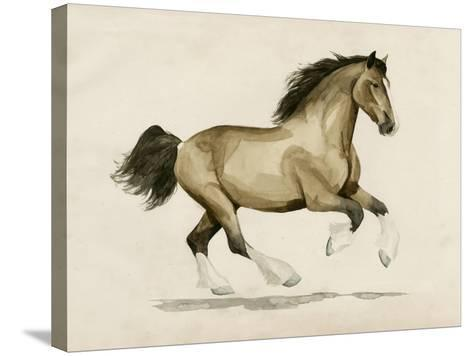 Clydesdale I-Grace Popp-Stretched Canvas Print