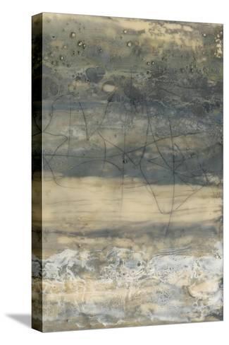 Earthen Lines II-Jennifer Goldberger-Stretched Canvas Print