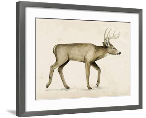 Wandering IV-Grace Popp-Framed Art Print