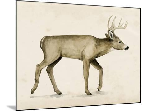 Wandering IV-Grace Popp-Mounted Art Print