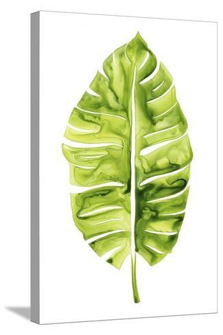Banana Leaf Study I-Grace Popp-Stretched Canvas Print
