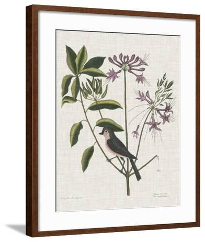 Studies in Nature I-Mark Catesby-Framed Art Print