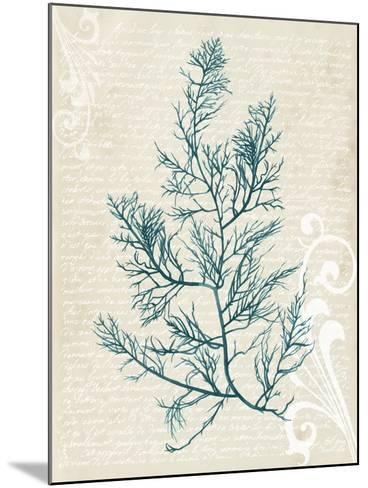 Teal Seaweed I-Grace Popp-Mounted Art Print