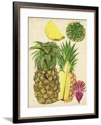 Tropical Pineapple Study I-Melissa Wang-Framed Art Print