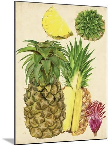 Tropical Pineapple Study I-Melissa Wang-Mounted Art Print