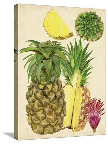 Tropical Pineapple Study I-Melissa Wang-Stretched Canvas Print