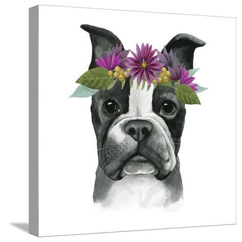 Flower Crown Pup II-Grace Popp-Stretched Canvas Print