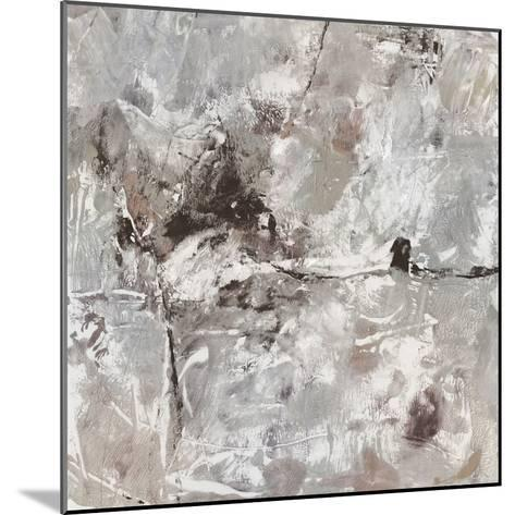 Neutral Display II-Tim OToole-Mounted Art Print