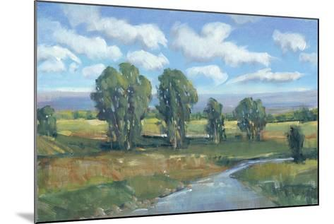 Lazy River Day I-Tim OToole-Mounted Art Print