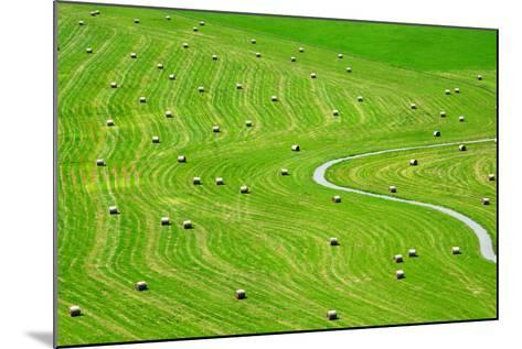 Bales of Hay on Meadow. Aerial View on Summer Landscape.- Peteri-Mounted Photographic Print