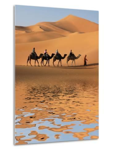 Camel Caravan Going along the Lake the Sahara Desert, Morocco.-Vladimir Wrangel-Metal Print
