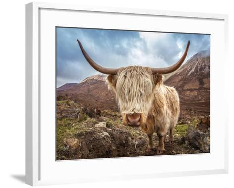 Close up Portrait of a Highland Cattle at the Glamaig Mountains on Isle of Skye, Scotland, UK-Zoltan Gabor-Framed Art Print