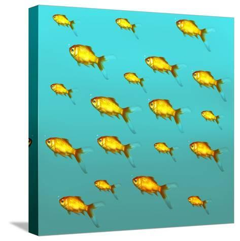 Illustrative Background of Many Red Freshwater Fish-Valentina Photos-Stretched Canvas Print