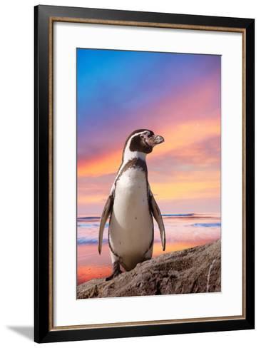 Cute Penguin with Sunset Background-Eric Gevaert-Framed Art Print