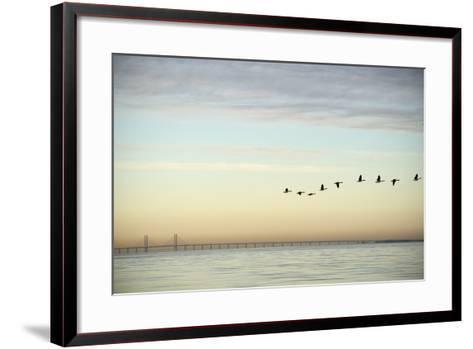 Flock of Birds Flying near Bridge- BMJ-Framed Art Print