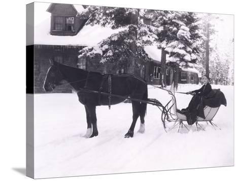 Winter Wonderland-Everett Collection-Stretched Canvas Print