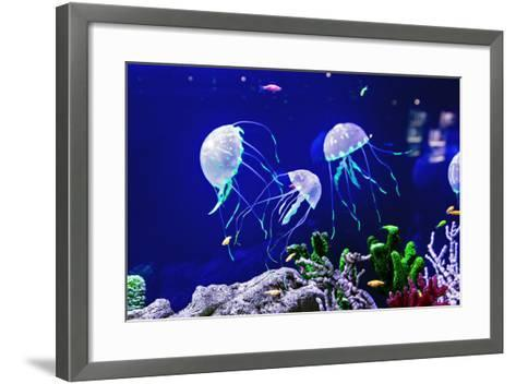 Beautiful Jellyfish, Medusa in the Neon Light with the Fishes. Aquarium with Blue Jellyfish and Lot-Dezay-Framed Art Print