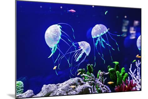 Beautiful Jellyfish, Medusa in the Neon Light with the Fishes. Aquarium with Blue Jellyfish and Lot-Dezay-Mounted Photographic Print