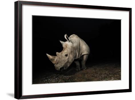 White Rhinoceros-Signature Message-Framed Art Print