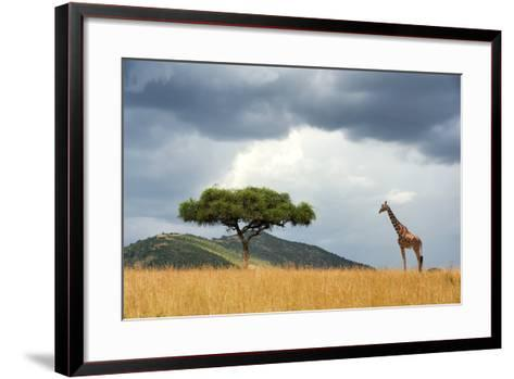 Beautiful Landscape with Nobody Tree and Gireffe in Africa-Volodymyr Burdiak-Framed Art Print
