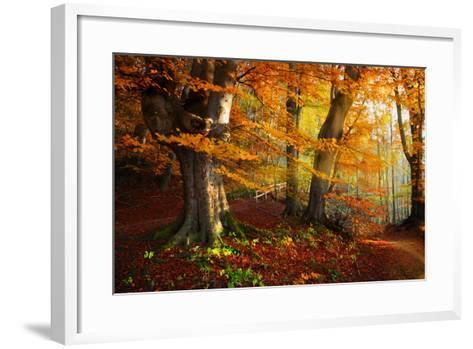 Landscape Nice Fantasy Forest with Creek in a Golden Autumn. Wall-Poster Idea.- S Castelli-Framed Art Print