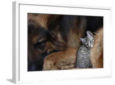Large Dog and a Cat.-Valentina Razumova-Framed Art Print