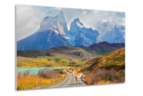 Majestic Peaks of Los Kuernos over Lake Pehoe. on a Dirt Road is worth Guanaco - Lama. the National-kavram-Metal Print