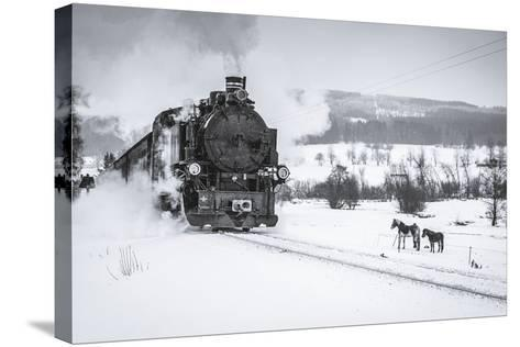 Old Steam Train Puffing across Winter Landscape in Sudeten between Czech Republic and Germany. Vint-Tomas Kulaja-Stretched Canvas Print