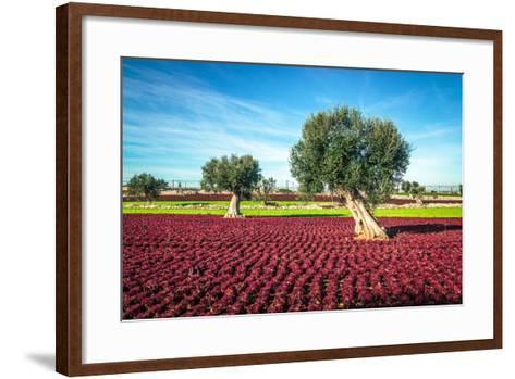 The Beautiful and Colorful Landscapes in Puglia-Sabino Parente-Framed Art Print