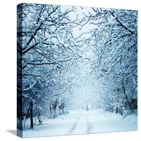 Winter Landscape-Triff-Stretched Canvas Print