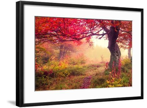 Majestic Landscape with Autumn Trees in Forest. Carpathian, Ukraine, Europe. Beauty World. Retro Fi-Creative Travel Projects-Framed Art Print