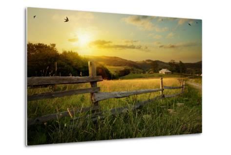 Art Rural Landscape. Field and Grass-Konstanttin-Metal Print