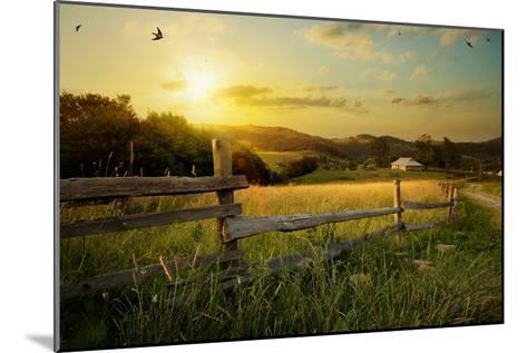 Art Rural Landscape. Field and Grass-Konstanttin-Mounted Photographic Print