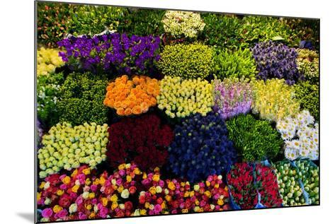 Colorful Flowers in a Florist's. Gardening, Spring, Nature Background-Michal Bednarek-Mounted Photographic Print