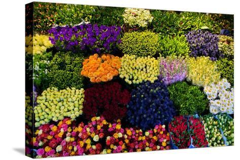Colorful Flowers in a Florist's. Gardening, Spring, Nature Background-Michal Bednarek-Stretched Canvas Print