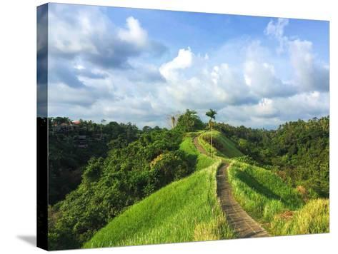 Idyllic Walking Path on Top of Green Hills. Tropical Nature Scene. Narrow Path in Rice Fields. Exot-Davdeka-Stretched Canvas Print