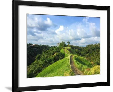 Idyllic Walking Path on Top of Green Hills. Tropical Nature Scene. Narrow Path in Rice Fields. Exot-Davdeka-Framed Art Print