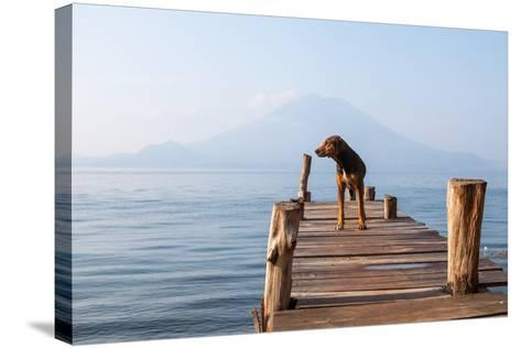 Landscape with a Dog on a Pier by the Lake.-Tati Nova photo Mexico-Stretched Canvas Print