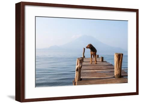 Landscape with a Dog on a Pier by the Lake.-Tati Nova photo Mexico-Framed Art Print