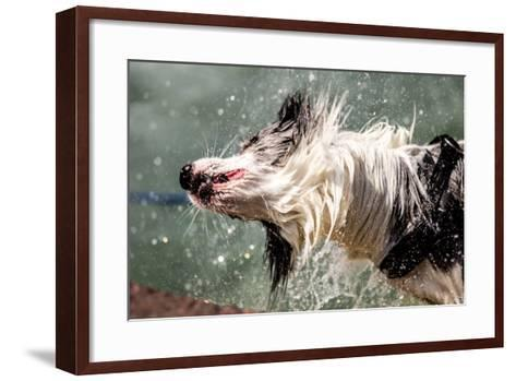 Shaking Dog- FeSeven-Framed Art Print