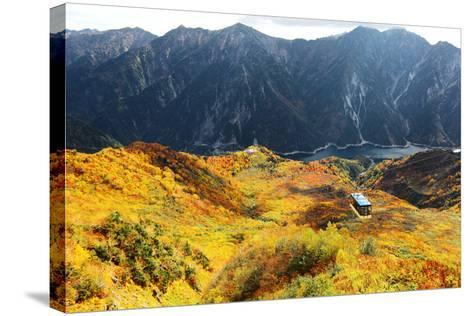 Aerial Panorama of a Scenic Cable Car Flying over the Beautiful Autumn Valley in Tateyama Kurobe Al-CHEN MIN CHUN-Stretched Canvas Print